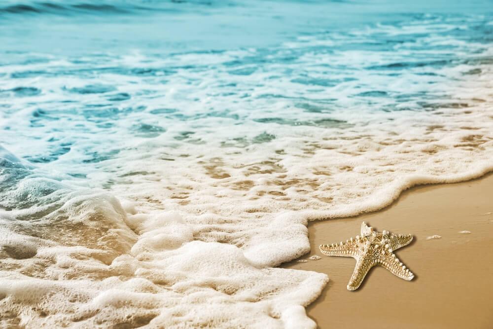 The Muslim Ummah today is like the foam on the beach.
